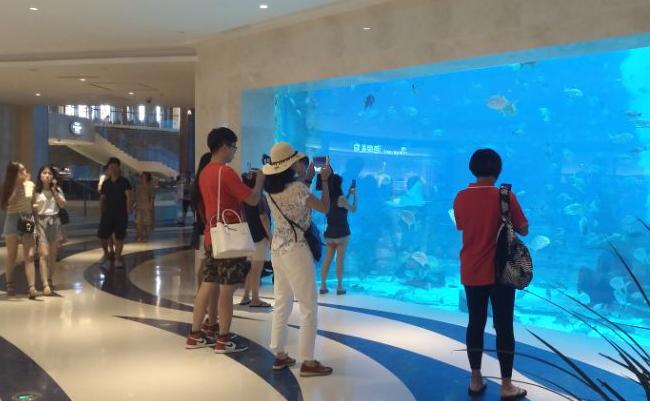 海棠湾亚特兰蒂斯酒店水族馆
